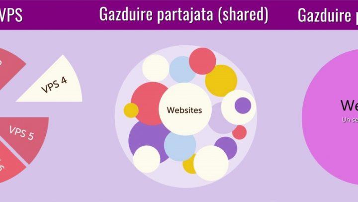 Web hosting – tipuri, caracteristici.